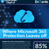 Where Microsoft 365 Protection Leaves Off